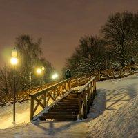 Ночь. Зима. :: Александр Орлов
