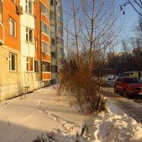 Январь однако :: Андрей Лукьянов