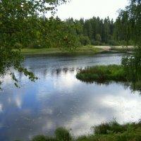 Река Оредеж :: Самохвалова Зинаида