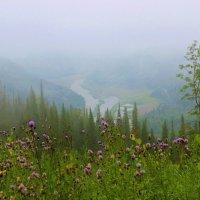 Август с туманами :: Сергей Чиняев