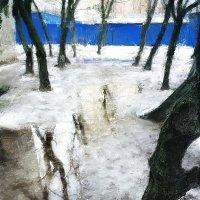 синий забор :: Николай Семёнов