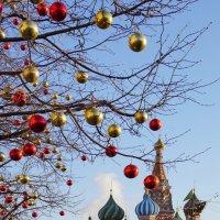 Новогодняя ярмарка :: Ольга