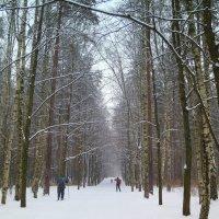 Зима :: Валентина Жукова