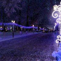 Новогодняя иллюминация в парке Пушкина :: Andrew