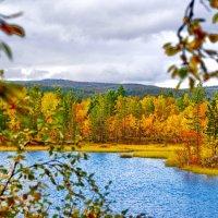 Заполярная осень :: вадим измайлов