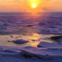 утром на Финском заливе :: Георгий