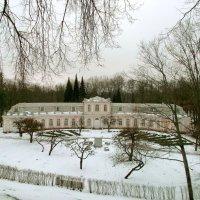 Оранжерейный сад зимой. :: VasiLina *