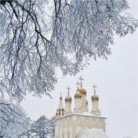 Зимнее... :: Лена L.