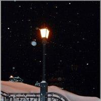 ночные фонари :: muh5257