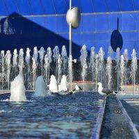 Игры воды :: Николай Танаев