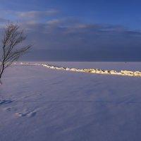 минимализм на финском заливе :: Георгий