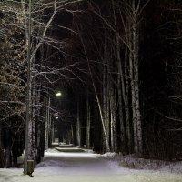парк :: Аленка Алимова