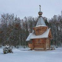 Зима пришла! :: Александр Шмалёв