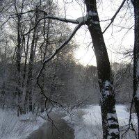 Кисельные реки, молочные берега :: Анна Воробьева