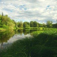 """Эвенкия: Старое старое озеро, там кикиморы живут. :: Sozidatel Online """"Евгений Щербаков"""""""