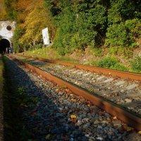 Заброшенная ж/д станция, Абхазия :: Юлия Ненахова