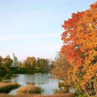 Ораниенбаумский пейзаж. :: VasiLina *