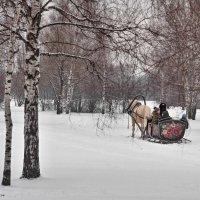 Русская зима. :: Сергей Басов