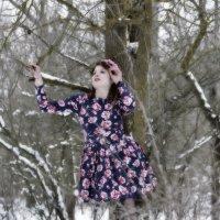 Мари зимняя сказка :: Роза Бара