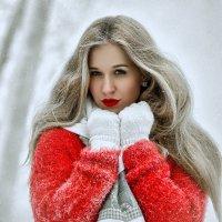 Зима :: Anna Albert