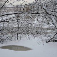 островок тишины :: sv.kaschuk