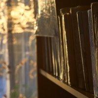 Всё бледнеет перед книгами.  © Антон Чехов :: Владислав Левашов