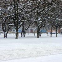 Искристый снег,  как ангела крыло. :: Валентина ツ ღ✿ღ