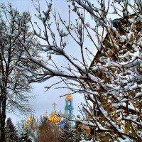 Зима продолжается... :: Елена Строганова