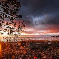 Золото заката :: Татьяна Афиногенова