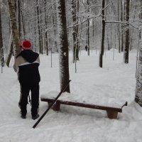 А вас лыжня не зовет? :: Андрей Лукьянов