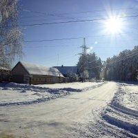 морозный день :: оксана