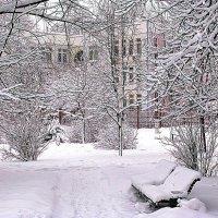 Зима вокруг дома моего. :: Владимир Драгунский