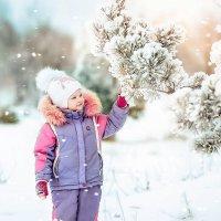Снежная зимушка :: Марина Демченко