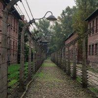 Освенцим :: Ruslan --