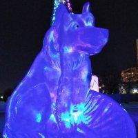 ... собачка в ледовом городке :: Татьяна Котельникова