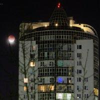 Луна затмячиться устала и выглянула :: StudioRAK Ragozin Alexey