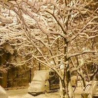 Зимние утро :: Александр