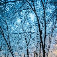Москва, снежное утро :: Игорь Герман