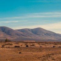 Марсианский пейзаж острова Фуэртевентура :: Игорь Геттингер (Igor Hettinger)