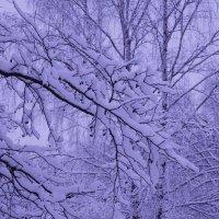 Зима – это время, когда ты ждешь лета, но в то же время безумно радуешься снегопаду :: Ольга Русанова (olg-rusanowa2010)