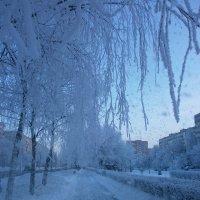 Зима в Городе ... :: Алёна Савина