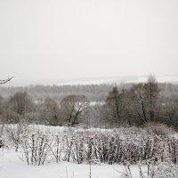 Зимние мотивы :: Константин Сафронов