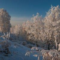 Белый пуховый платок :: Наталия Женишек