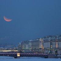 Красная луна, суперлуние, полнолуние и затмение одновременно :: Вера Моисеева