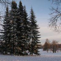 Зимний пейзаж. :: ТАТЬЯНА (tatik)