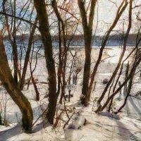 Всё это - сон, всё это - снег, всё это светлые мысли :: Ирина Данилова