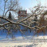 Новодевичий монастырь :: ninell nikitina