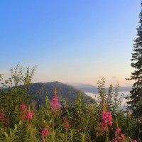 Утром в горах :: Сергей Чиняев