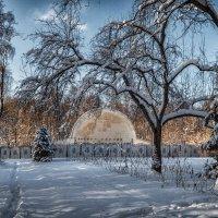 Летняя эстрадная площадка зимой. :: Василий Ярославцев