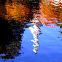 Отражение.... :: Владимир Секерко